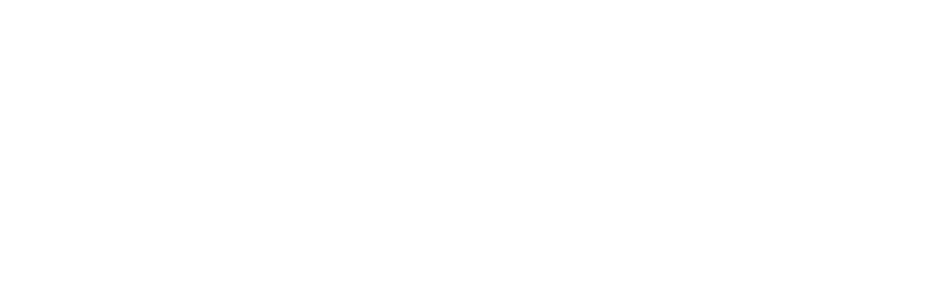allison-shapira-logo